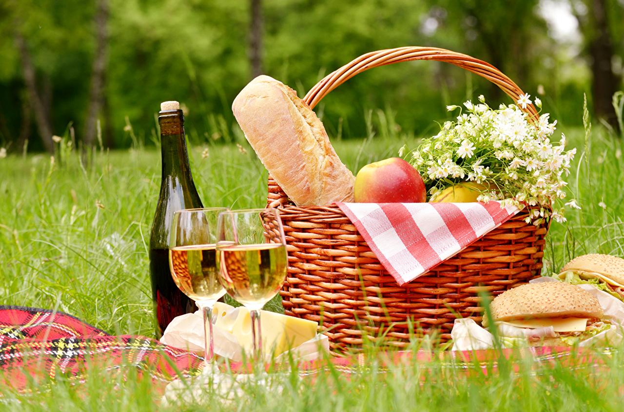 5 Lugares seguros para hacer pícnic en Guatemala y aprovechar el verano